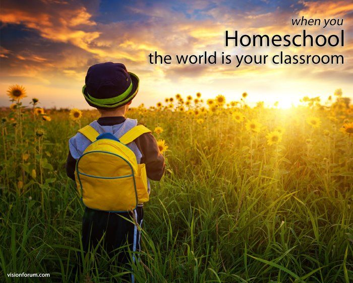 Homeschool Cooperatives and Homeschool Academies: Similar but Different
