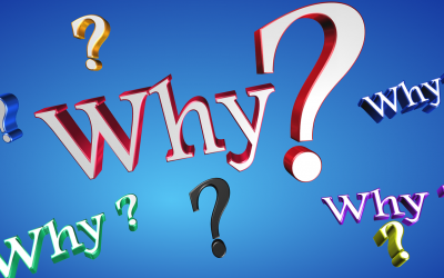"The Power of Asking ""Why?"""